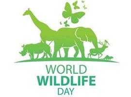 World Wildlife Day - March 2021